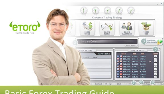 Basic Forex Trading Guide